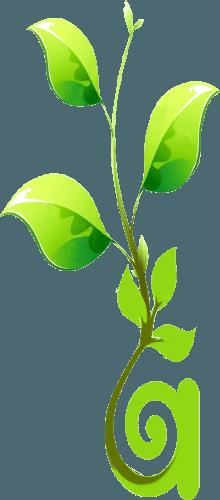 Start Box : Votre service d'incubateur de projets, pour la création de votre entreprise